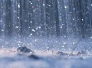 """""""Lluvia en las venas"""", de Carlos Hurtado Pastor"""